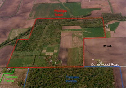 Image of field showing natural areas