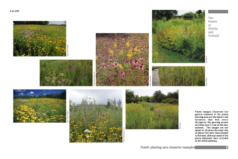Prairie examples for the Prairie at Orchard and Florida