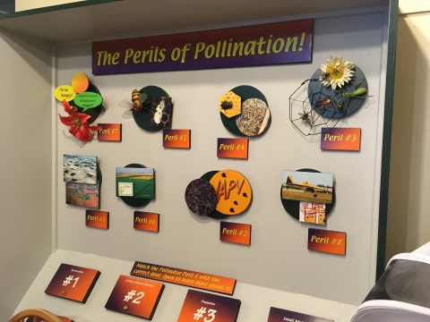 Perils of Pollinations board game