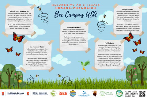 UIUC Bee Campus USA; Thinking globally and acting locally, Bee Campus USA bring communities together to sustain pollinators by increasing the abundance of native plants, providing nest sites, and reducing the use of pesticides; This 2.7-acre prairie zone was funded through the generous support of John Francis Pizzo and Pizzo & Associates, Ltd., Dr. Jack Paxton, SSC, and F&S.; Illinois has a total of 400-500 native bee species!; Pollinators such as bees, butterflies, moths, hover flies, etc. are here!
