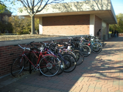 Bicycle Parking at the Undergraduate Library plaza - picture 1