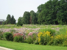 Prairie at Florida Avenue and Orchard Street