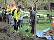 student adding soil to Arbor Day 2015 tree