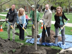 tree committee adding soil to Arbor Day 2015 tree