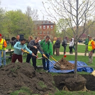 sustainability reps adding soil to Arbor Day 2015 tree